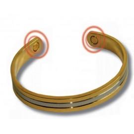 Bracelet bio-magnétique